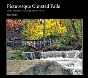 Picturesque Olmsted Falls book
