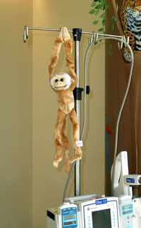 Monkey on IV pole at Rainbow Babies and Childrens Hospital